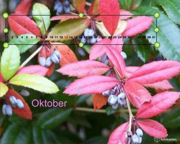 Fotokasten Kalendarium bearbeiten