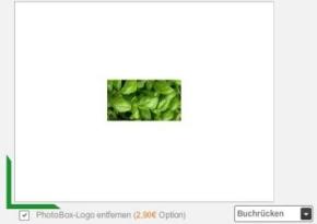 Onlineeditor_Buchruecken_ohne_Logo.JPG
