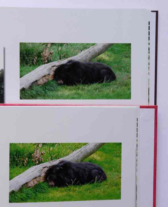 Gartenmobel Weib Braun : Das Tchibo Fotobuch im Test  Erfahrungen mit dem Fotokasten Angebot